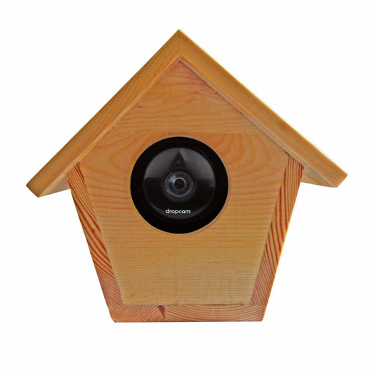 bird-house-dropcam