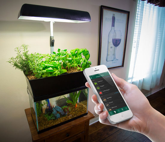 InnoGro AquaGarden Smart Garden To Grow Your Own Food Connected