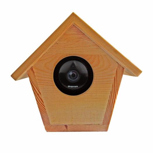 bird-house-dropcam