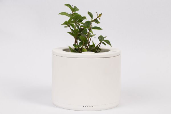 Planty-Connected-Pot-with-Smart-Sensors