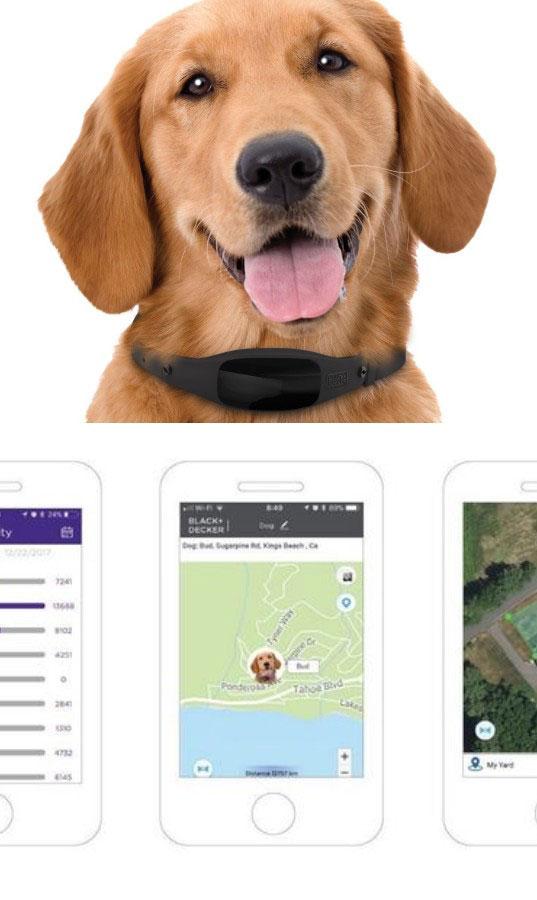 Black /& Decker OLED Smart Dog Collar w// GPS /& Activity Tracking 2-way Audio